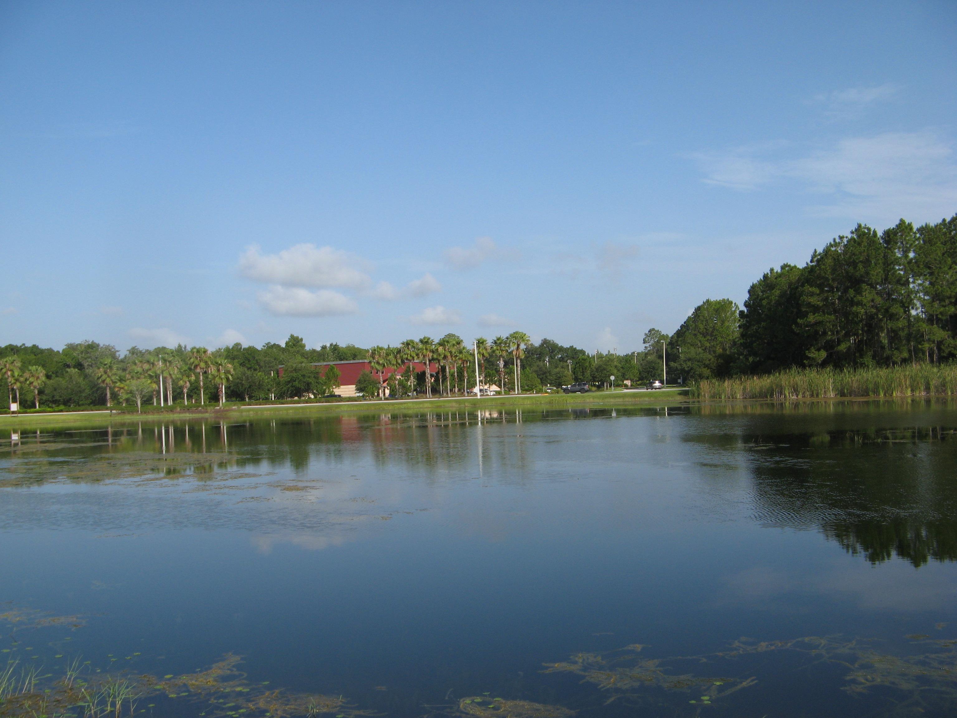 Tampa 543
